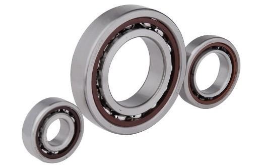 Original Qualityjapan Bearing Nu 204 NSK Cylindrical Roller Bearing Nj204 Nup204