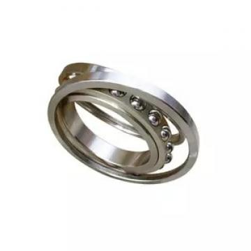 FAG 6020-Z  Single Row Ball Bearings