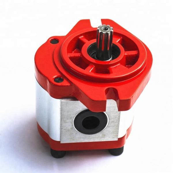 REXROTH R901053049 PVV51-1X/193-046RA15DLMC Vane pump #1 image