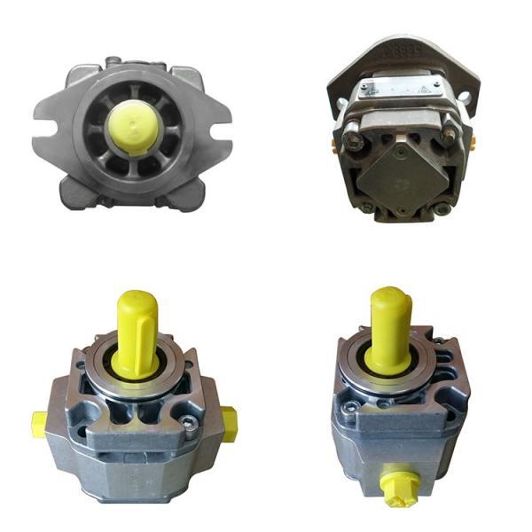 REXROTH R901125797 PVV54-1X/162-082RB15UUMC Vane pump #2 image